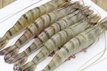 基围虾儿童可以吃吗 适当食用有好处