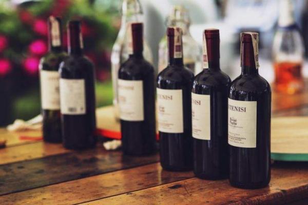 红酒品种怎么认 从葡萄品种入手