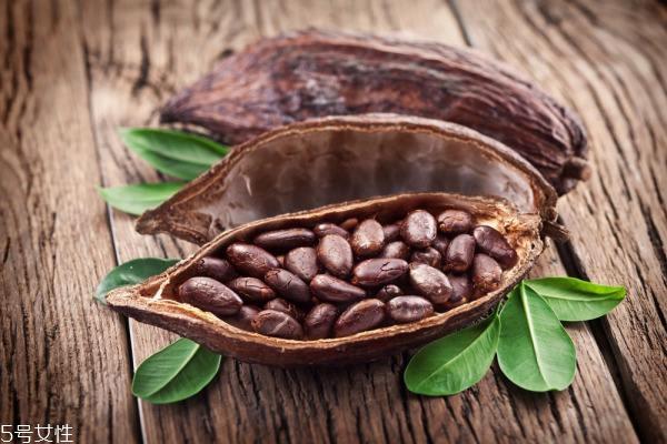 巧克力哪里产的最好 挑手工巧克力就选法国