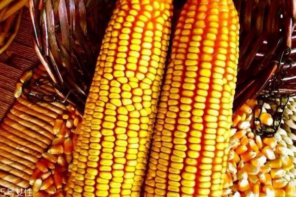 玉米容易消化吗 吃多了消化不良