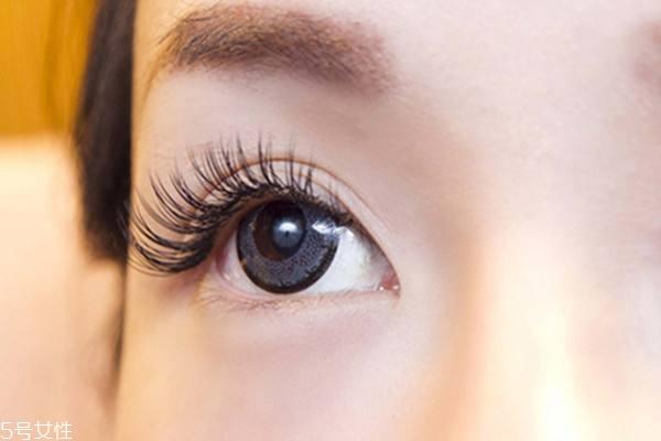 角蛋白浓睫术能维持多久 大约可以维持6-8周