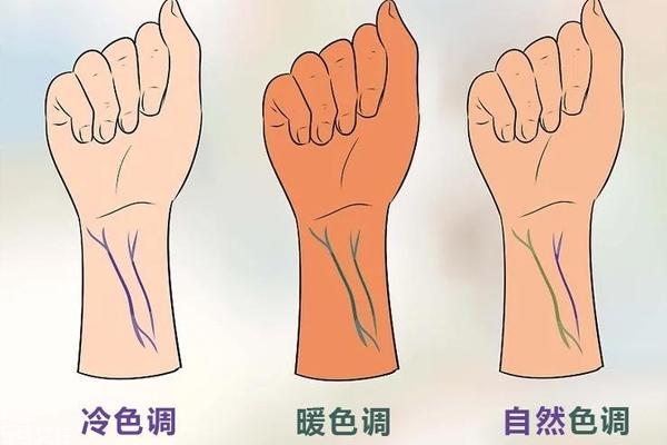 血管怎么判断肤色冷暖 简单方法全面认识你的肤色