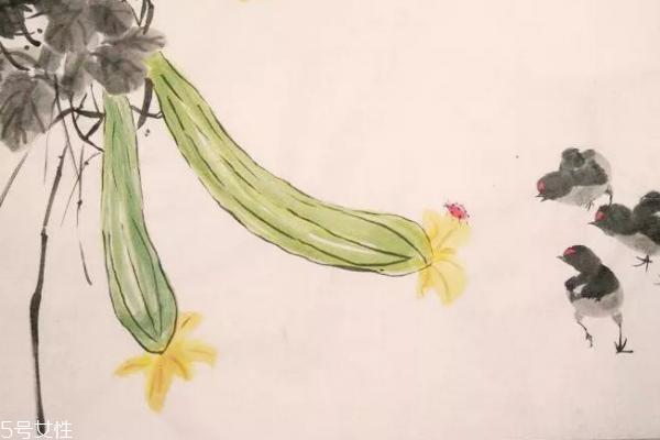 丝瓜多久施一次肥 丝瓜很好种