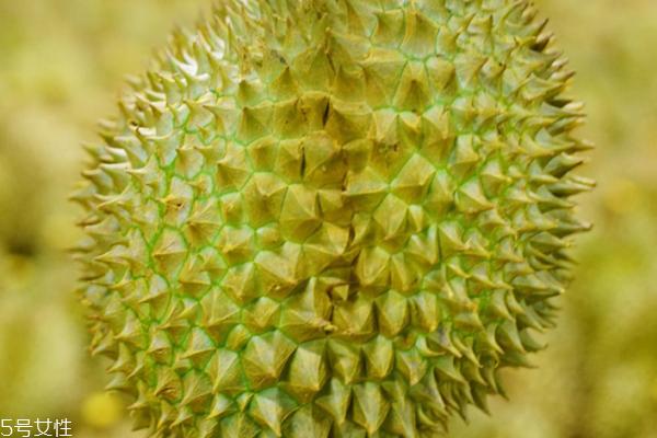 榴莲是一年四季都有吗 每个季节都能吃到