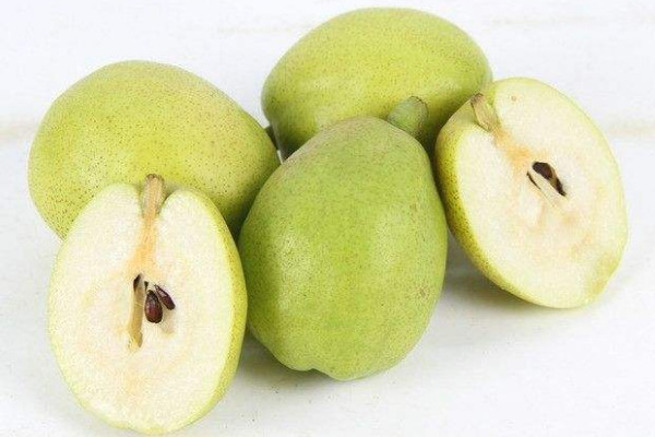 梨子可以分着吃吗?胃酸过多的人一定要少吃梨
