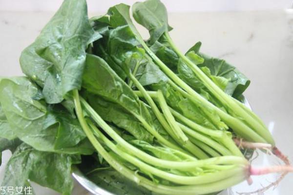 菠菜为什么不能晚上吃 适量还是可以的