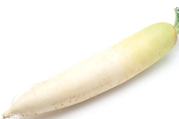 白萝卜是解药的吗 对中药有影响