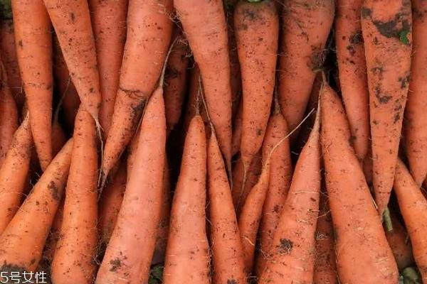 胡萝卜为什么是红色的 胡萝卜素的颜色