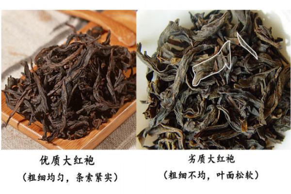 大红袍茶叶形状图片 真假对比图