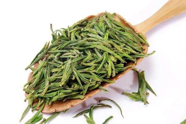 绿茶为什么要放冰箱 为了延长保存时间
