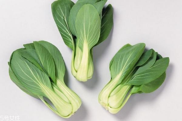秋季可以种什么蔬菜 这些都可以