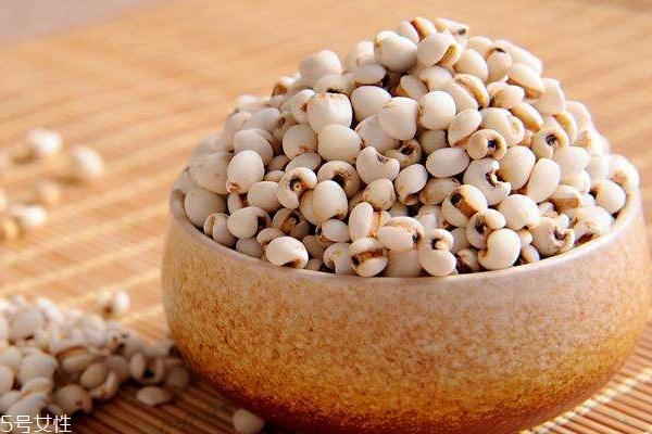 薏米是什么气味 薏米过期是什么气味