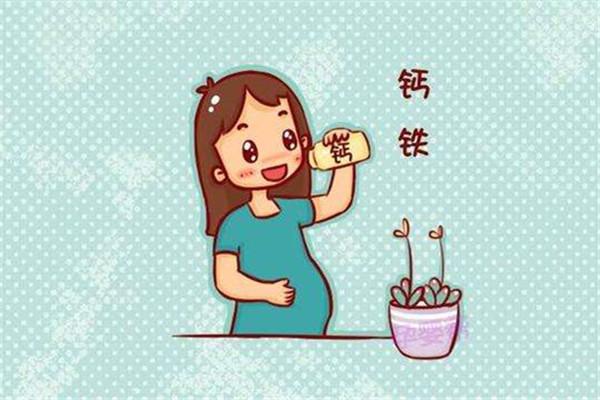 孕期需要补充什么营养 孕期营养补充迷思