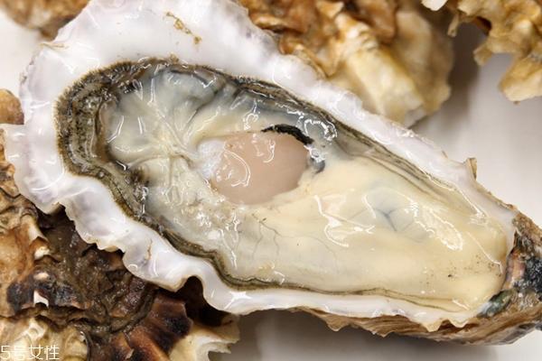 进口生蚝能生吃吗 品质好价格高