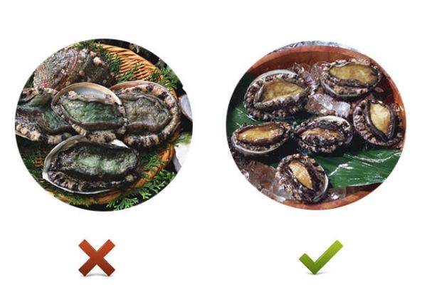 鲍鱼发绿变硬还能吃吗 不新鲜不能吃