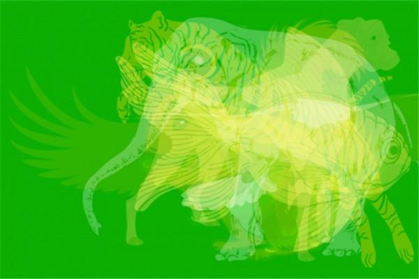 第一眼看到什么动物就是什么人 第一眼看到的动物测试