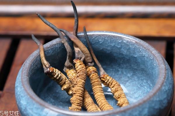 冬虫夏草是什么气味 从气味如何看真假