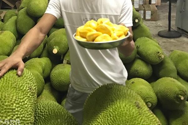 菠萝蜜为什么贵 有以下原因