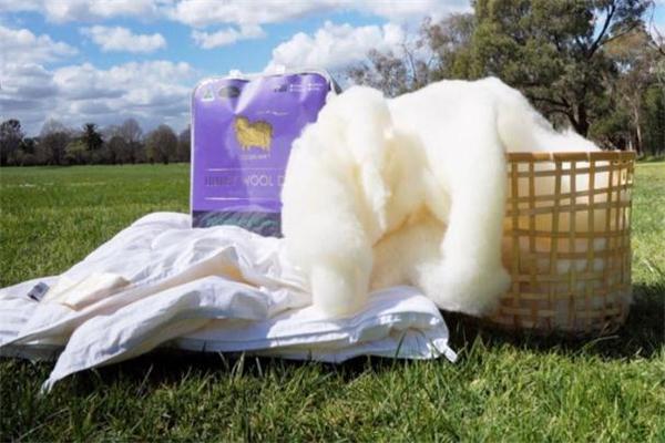 澳洲羊毛被多少钱 根据被子重量来定