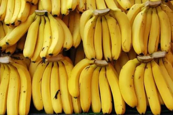 香蕉中间硬的能吃吗 催熟香蕉损伤肝脑