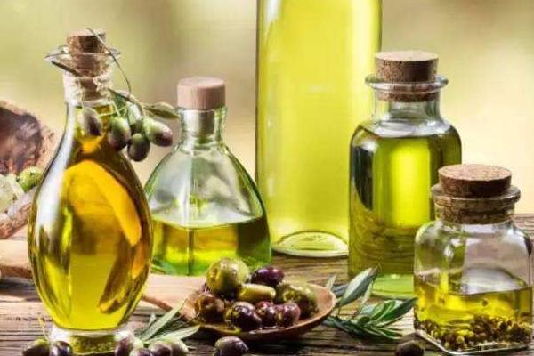 橄榄油产地哪最好 世界公认最优质的3个国家