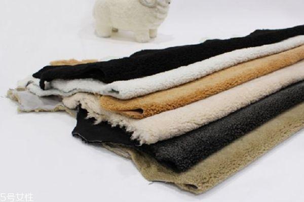羊羔毛是什么成分 小羊羔身上的毛