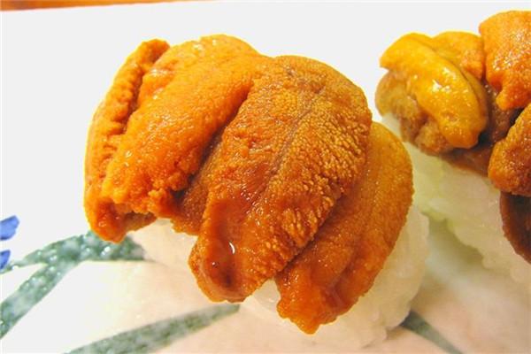 台湾和日本常见食用海胆种类