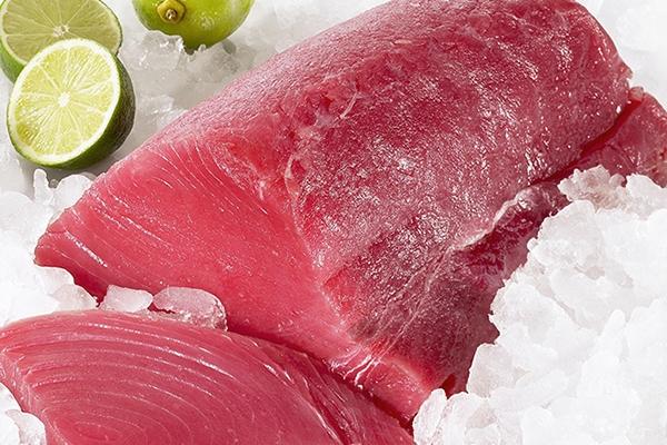 金枪鱼是三文鱼吗 不是一种鱼