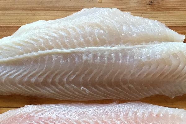 龙利鱼可以减肥吗 不利于减肥