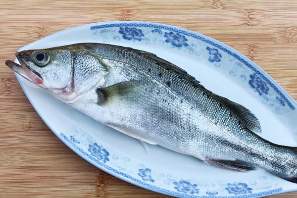 海鲈鱼刺多吗 属于刺少的鱼