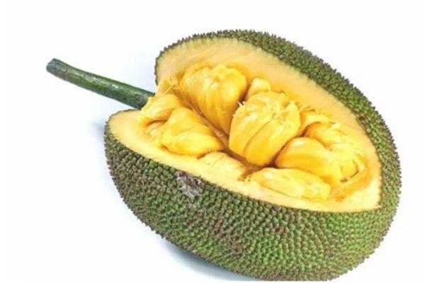 怎么判断菠萝蜜是否成熟 菠萝蜜挑选方法