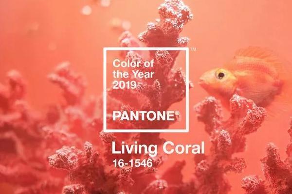 珊瑚橘发色适合什么肤色 珊瑚橘需要漂发吗
