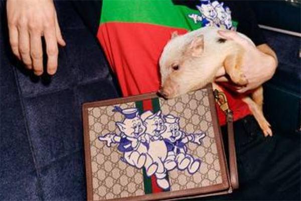 gucci猪年限定包包多少钱 三只小猪陪你过年