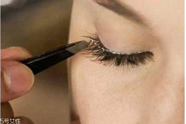 初学者怎么贴假睫毛图片