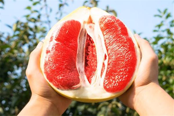 葡萄柚可以空腹吃吗 对胃部有损害