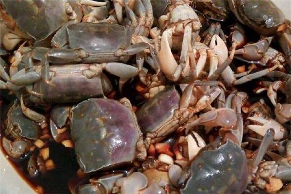 醉蟹可以放多久 存放环境很关键