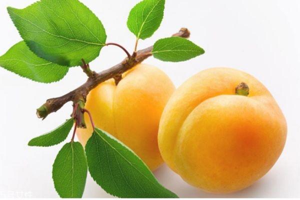 黄桃哪里产的好吃 黄桃怎么挑选