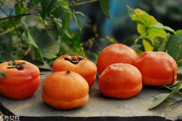 柿子和什么一起吃好 吃柿子注意事项