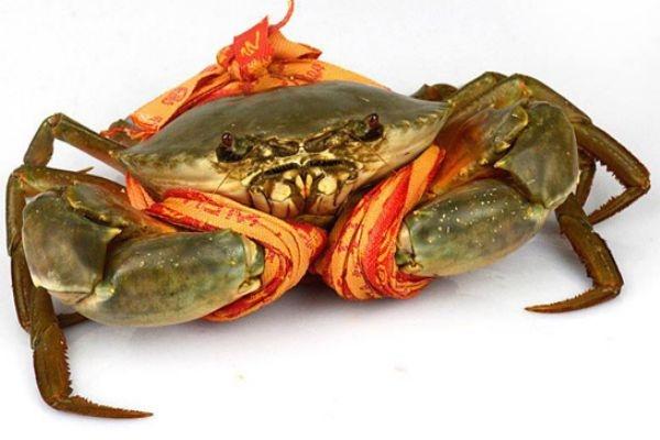 三门青蟹什么时候上市 三门青蟹的特点