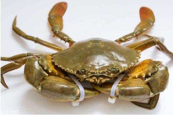 三门青蟹怎么挑选 青蟹判断是否鲜活小诀窍