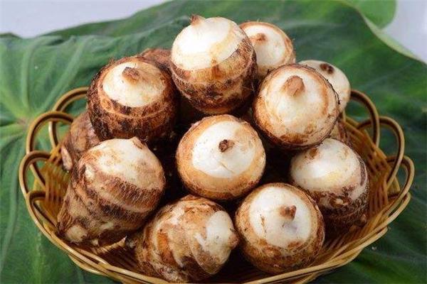 芋头和红薯哪个热量高 减肥人群要注意