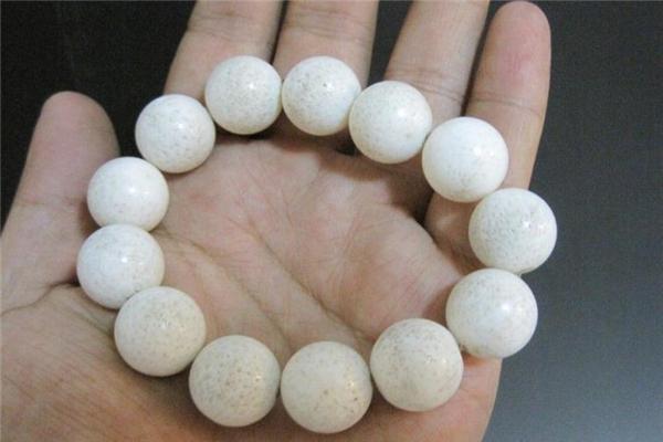 白珊瑚手串多少钱 貌美小饰品