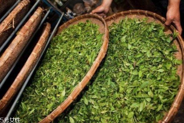 茶叶水泡脚能去脚臭吗 茶叶泡脚的正确方法
