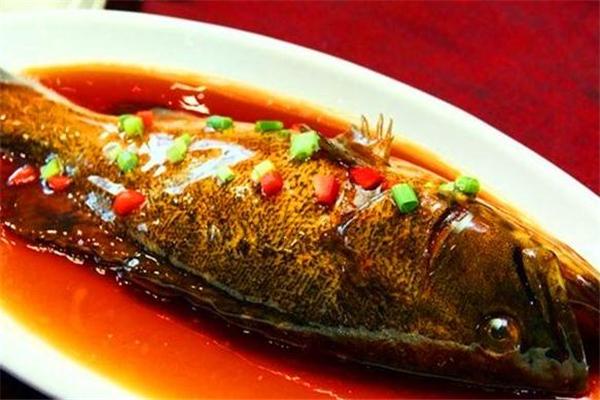 红烧石斑鱼的做法 家常做法很简单