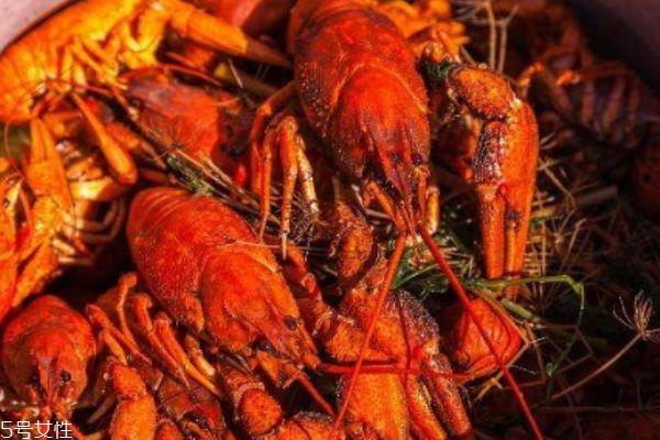 小龙虾的黄到底能不能吃 怎么判断是否是死虾