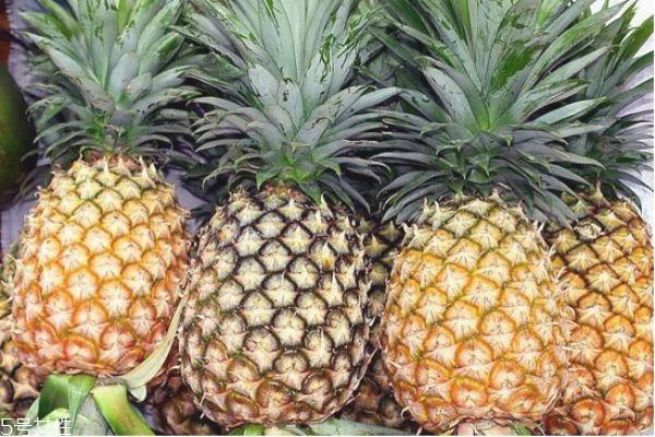 菠萝怎么吃不酸 吃菠萝不酸不涩的小妙招