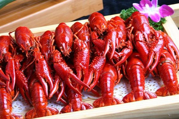 小龙虾怎么养殖 小龙虾做法