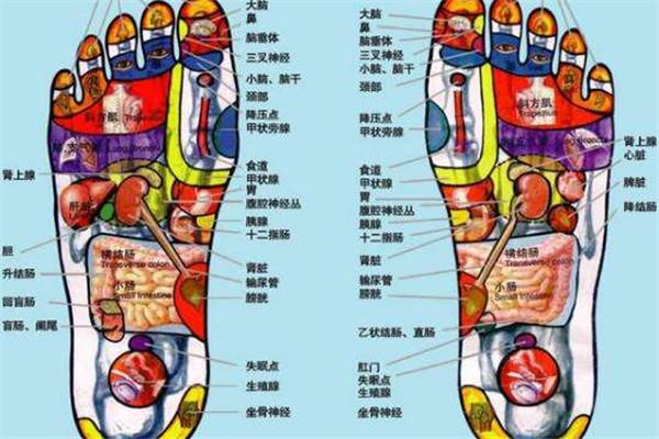 脚上有哪些穴位 哪些穴位代表身体健康