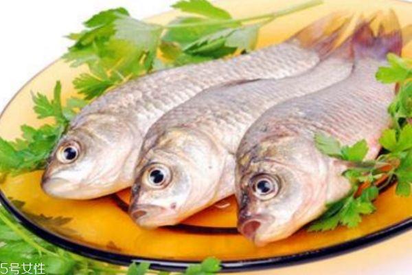 减肥中午吃鱼会胖吗图片