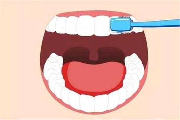 睡前不刷牙的危害是什么 刷牙的重要性